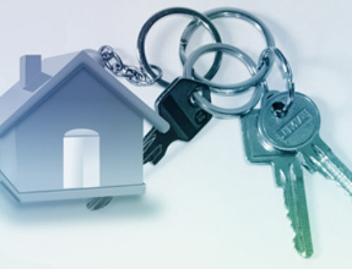 Real Estate Website Designing