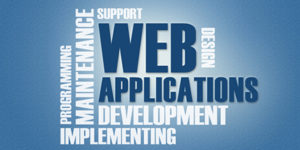 web-application-development-bangalore-echopx-technologies