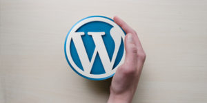 wordpress-web-design_echopx-technologies